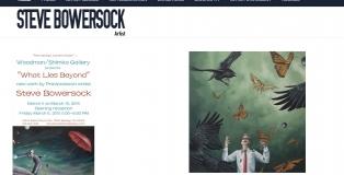 stevebowersock.com